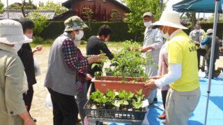 園芸部イベント「苗まつり」が行われました(北名古屋市回想法センター)